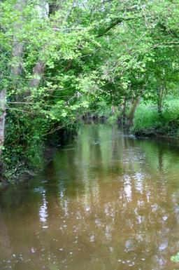 Ruisseau de l'Eau Bourde, affluent de la rive gauche de la Garonne. Source : http://data.abuledu.org/URI/47f533d2-ruisseau-de-l-eau-bourde-affluent-de-la-rive-gauche-de-la-garonne