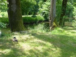 Ruisseau de l'Eau Bourde au parc du Moulineau. Source : http://data.abuledu.org/URI/582644cd-ruisseau-de-l-eau-bourde-au-parc-du-moulineau