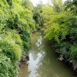 Ruisseau de l'Euille à Cadillac-33. Source : http://data.abuledu.org/URI/599a76c7-ruisseau-de-l-euille-a-cadillac-33
