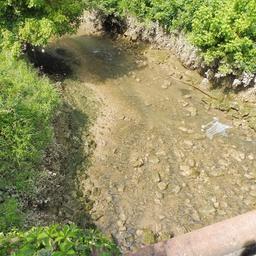Ruisseau de l'Euille à Cadillac-33. Source : http://data.abuledu.org/URI/599a7705-ruisseau-de-l-euille-a-cadillac-33