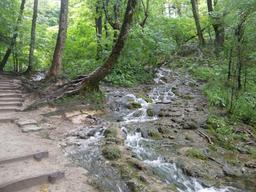 Ruisseau en Croatie. Source : http://data.abuledu.org/URI/5561833e-ruisseau-en-croatie-