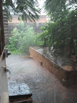 Saison des pluies en Casamance. Source : http://data.abuledu.org/URI/5518f2a3-saison-des-pluies-en-casamance