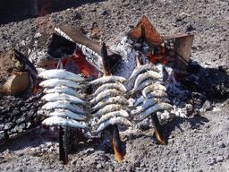 Sardines au gril sur la plage. Source : http://data.abuledu.org/URI/52e42a36-sardine-au-gril-sur-la-plage