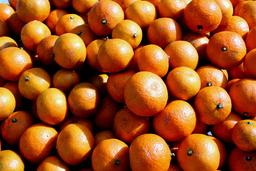 Oranges de Noël. Source : http://data.abuledu.org/URI/51def388-satsuma-oranges-jpg