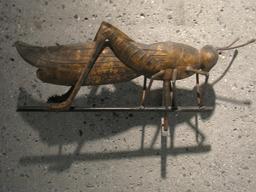Sauterelle en girouette. Source : http://data.abuledu.org/URI/53efcdcd-sauterelle-en-girouette