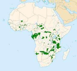 Sauvegarde des éléphants en Afrique. Source : http://data.abuledu.org/URI/5340015e-sauvegarde-des-elephants-en-afrique