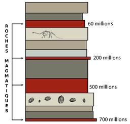 Schéma de datation relative des fossiles. Source : http://data.abuledu.org/URI/551c5fc2-schema-de-datation-relative-des-fossiles