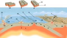 Schéma de la tectonique des plaques. Source : http://data.abuledu.org/URI/5094ef3c-schema-de-la-tectonique-des-plaques