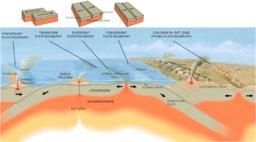 Schéma du fonctionnement des dorsales. Source : http://data.abuledu.org/URI/509ebcbe-schema-du-fonctionnement-des-dorsales