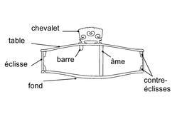 Schéma légendé de la coupe d'un violon. Source : http://data.abuledu.org/URI/53b1b460-schema-legende-de-la-coupe-d-un-violon