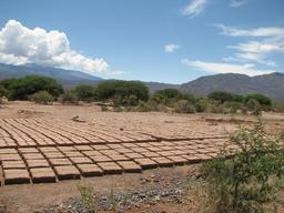 Séchage d'adobe au soleil. Source : http://data.abuledu.org/URI/52d13fd7-sechage-d-adobe-au-soleil