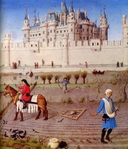 Semailles d'octobre des Très Riches Heures du Duc de Berry. Source : http://data.abuledu.org/URI/531c5f96-semailles-d-octobre-des-tres-riches-heures-du-duc-de-berry