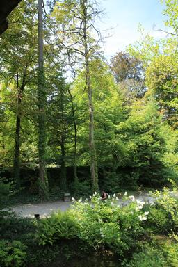 Sentier botanique au Clos Lucé. Source : http://data.abuledu.org/URI/55cbd868-sentier-botanique-au-clos-luce