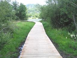 Sentier de randonnée sur pilotis autour du lac Chambon. Source : http://data.abuledu.org/URI/552430b0-sentier-de-randonnee-sur-pilotis-autour-du-lac-chambon