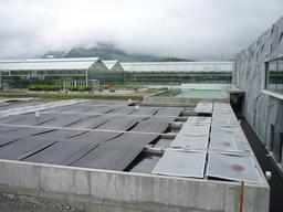 Serres et viviers de la Maison Tropicale suisse. Source : http://data.abuledu.org/URI/520c0c27-serres-et-viviers-de-la-maison-tropicale-suisse