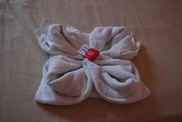 Serviette de bain pliée en forme de fleur. Source : http://data.abuledu.org/URI/52d84e5d-serviette-de-bain-pliee-en-forme-de-fleur