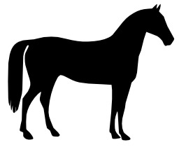 Silhouette de cheval. Source : http://data.abuledu.org/URI/54067ac3-silhouette-de-cheval