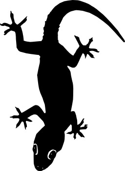 Silhouette de lézard. Source : http://data.abuledu.org/URI/535cd554-silhouette-de-lezard