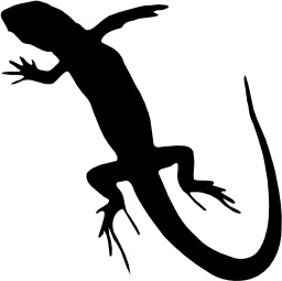 Silhouette de lézard. Source : http://data.abuledu.org/URI/535cd5b2-silhouette-de-lezard