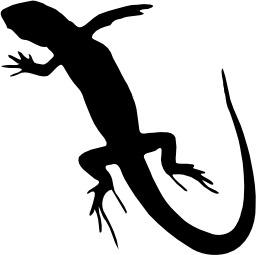 Silhouette de lézard. Source : http://data.abuledu.org/URI/535cd5b2-silhouette-de-lezard