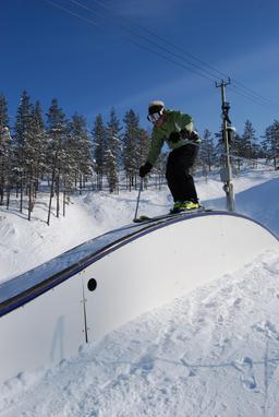 Skieur. Source : http://data.abuledu.org/URI/5020e7bb-skieur