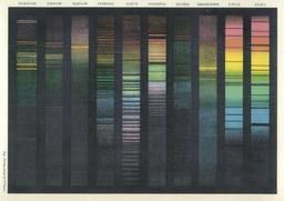 Spectre divers des couleurs. Source : http://data.abuledu.org/URI/52b6adab-spectre-divers-des-couleurs