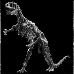 Squelette d'Allosaurus au Jardin des Plantes. Source : http://data.abuledu.org/URI/541d9575-squelette-d-allosaurus-au-jardin-des-plantes