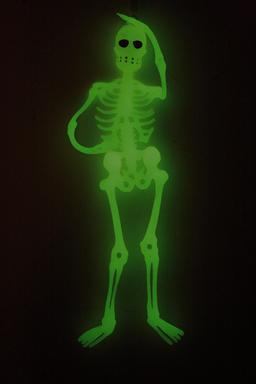 Squelette-fantôme vert. Source : http://data.abuledu.org/URI/53442ec7-squelette-fantome-vert