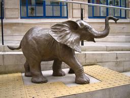 Statue d'éléphanteau. Source : http://data.abuledu.org/URI/52fb4a21-statue-d-elephanteau