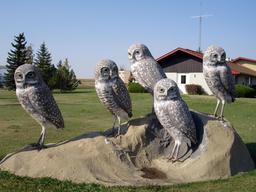 Statue des cinq chouettes. Source : http://data.abuledu.org/URI/535443e9-statue-des-cinq-chouettes