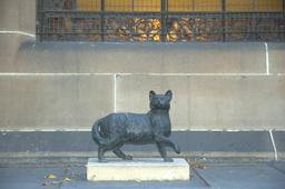 Statue du chat Trim. Source : http://data.abuledu.org/URI/52fa4ee1-statue-du-chat-trim