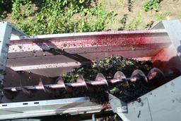 Stockage des grains de raisin vendangés. Source : http://data.abuledu.org/URI/5273f144-stockage-des-grains-de-raisin-vendanges