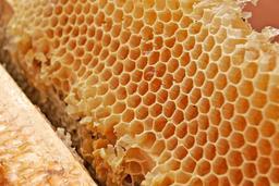 Structure hexagonale des rayons de miel. Source : http://data.abuledu.org/URI/51803fab-structure-hexagonale-des-rayons-de-miel