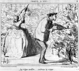 Sulfatage de la vigne en 1857. Source : http://data.abuledu.org/URI/56f516b8-sulfatage-de-la-vigne-en-1857