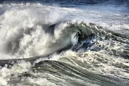 Surfeur à Santa Cruz. Source : http://data.abuledu.org/URI/53470f61-surfeur-a-santa-cruz