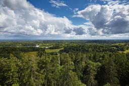 Suur Munamägi en Estonie. Source : http://data.abuledu.org/URI/5504b21a-suur-munamagi-en-estonie