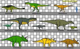 Tableau des tailles comparées de dinosaures américains. Source : http://data.abuledu.org/URI/47f509aa-tableau-des-tailles-compar-es-de-dinosaures-am-ricains
