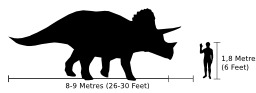 Taille du triceratops. Source : http://data.abuledu.org/URI/54b2e2e0-taille-du-triceratops