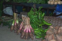 Taro et bananes vertes au marché. Source : http://data.abuledu.org/URI/529bbc53-taro-et-bananes-vertes-au-marche