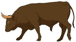 Taureau. Source : http://data.abuledu.org/URI/5049a739-taureau