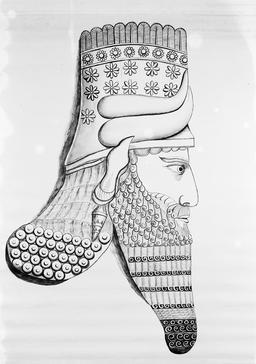 Tête assyrienne. Source : http://data.abuledu.org/URI/591bb2ff-tete-assyrienne