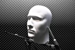 Tête de mannequin. Source : http://data.abuledu.org/URI/5339b839-tete-de-mannequin