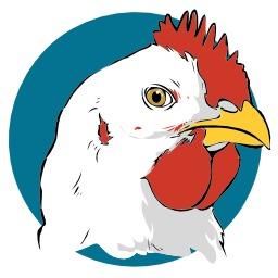 Tête de poule blanche. Source : http://data.abuledu.org/URI/5049afe7-tete-de-poule-blanche