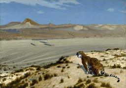 Tigre à l'affût dans le désert. Source : http://data.abuledu.org/URI/58f3d4f6-tigre-a-l-affut-dans-le-desert