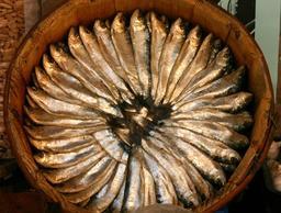 Tonneau de sardines. Source : http://data.abuledu.org/URI/52e425cd-tonneau-de-sardines