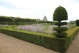 Topiaire aux Jardins de Villandry-37.. Source : http://data.abuledu.org/URI/55e7255d-topiaire-aux-jardins-de-villandry-37-