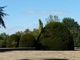 Topiaires du château de la Bourlie en Dordogne. Source : http://data.abuledu.org/URI/510d81bf-topiaires-du-chateau-de-la-bourlie-en-dordogne