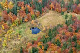 Tourbière du Frankenthal en automne. Source : http://data.abuledu.org/URI/565d05fa-tourbiere-du-frankenthal-en-automne