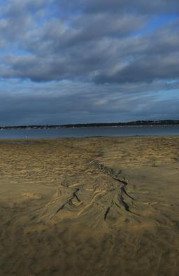 Traces dans le sable. Source : http://data.abuledu.org/URI/55bb6c5f-traces-dans-le-sable