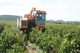 Tracteur à vendanger. Source : http://data.abuledu.org/URI/5273f034-tracteur-a-vendanger